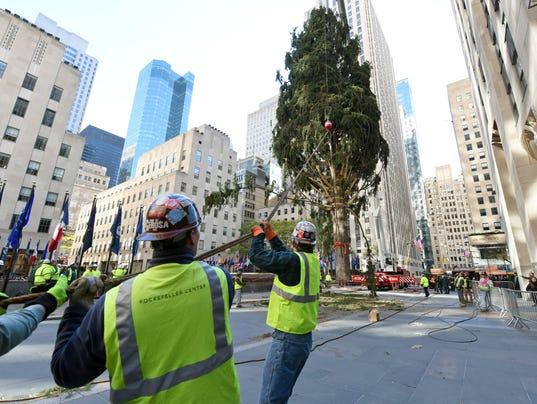 AP 2016 ROCKEFELLER CENTER CHRISTMAS TREE ARRIVAL IN NEW YORK A CPACOM USA NY