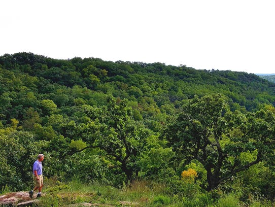 Dane County's Morton Forest offers stunning views of