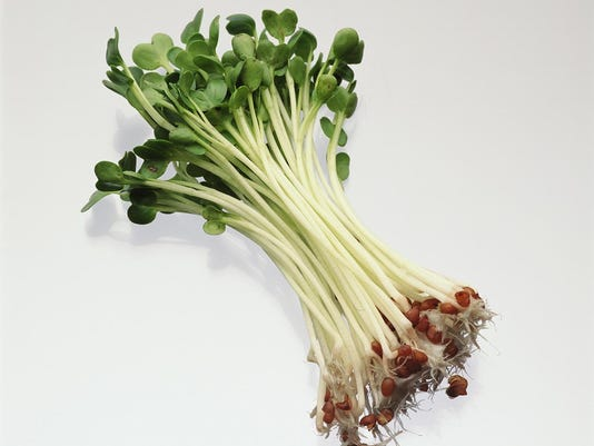 hs29-Sprouts