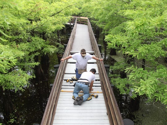 Willie Brown, front, and James Simpson, replace planks on the boardwalk at Six Mile Cypress Slough Preserve during a renovation project on Monday. The planks are being replaced with TanDeck which is an environmentally friendly marine grade dock board that is highly durable and resilient to harsh weather.