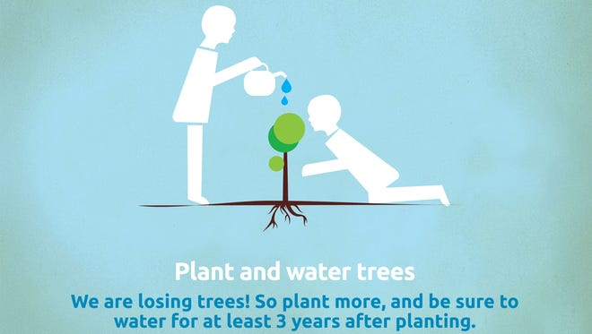 Water your new trees for three years.