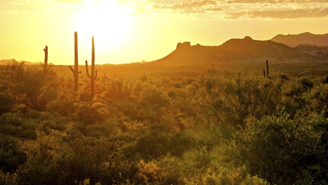 Desert sunset. Enjoy Arizona nature activities in the evening and early morning hours to beat the heat.