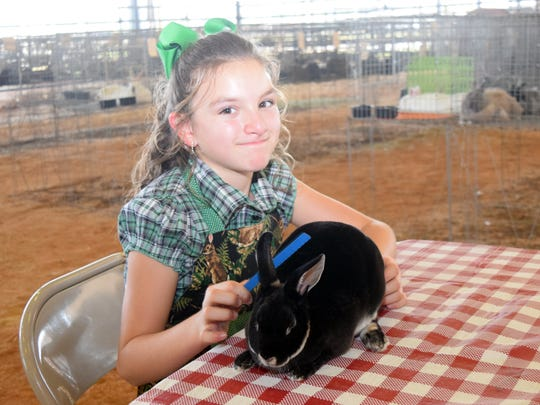 Jessi McDowell, 10 and a student at Hayden Lawrence Elementary School, brushes her rabbit Peppermint Patty while at the LSU AgCenter DeWitt Livestock Facility at the Rapides Parish Fair Thursday. The fair, located on Highway 167 near LSUA, continues until Sunday.
