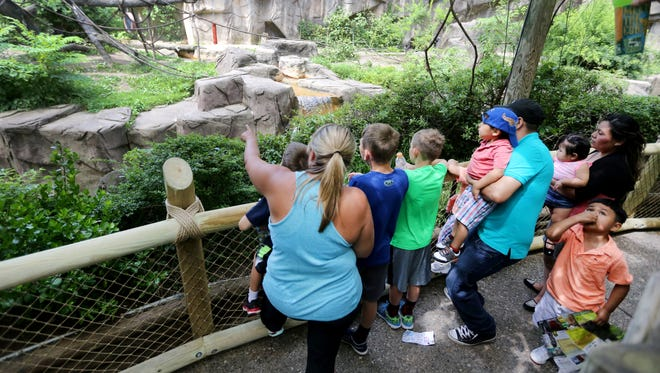 The Gorilla Exhibit at the Cincinnati Zoo and Botanical Garden reopened today after being closed since May 28 after a four-year-old boy crawled under the fence and through the bushes and fell into the moat.