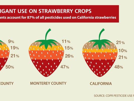 Fumigant Strawberry graphic (2).jpg