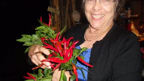 Carolyn Brown with her bouquet of red peppers to dry for the Christmas sale (provided photo)