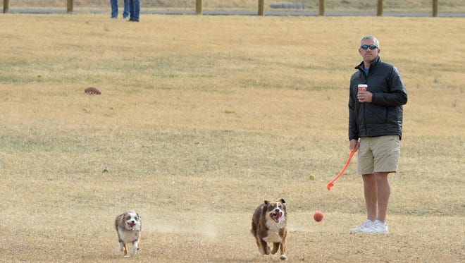 Charlie Bryan of Brentwood plays catch with his Australian shepherds Lucy and Murphy at City of Franklin's relocated and improved K-9 Korral Dog Park at The Park at Harlinsdale Farm. The dog park now features four acres of open space.