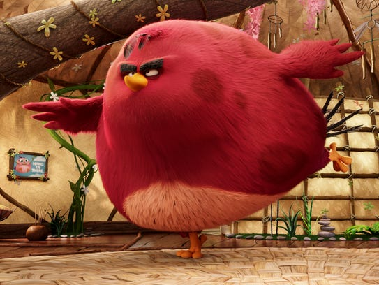 A Field Guide To The Flock Of Angry Birds Characters