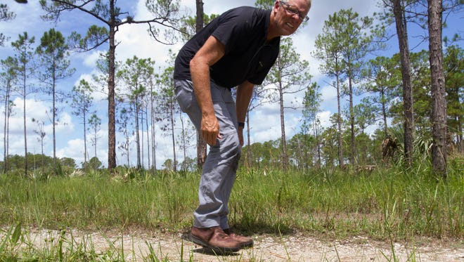 Andrew West triggers a camera-trap while testing at the Florida Panther National Wildlife Refuge in Collier County.