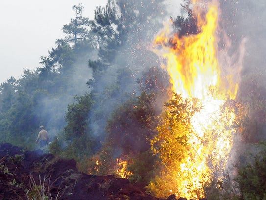 This file photo shows a controlled burn used to help