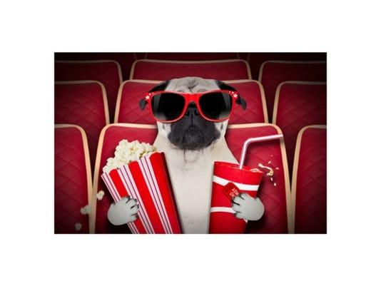 636241510721041161-Movies-Dogwithpopcorn.jpg