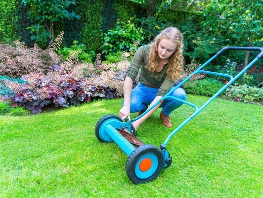 It is the time to get your lawn summer ready - Take this quiz for lawn tips!