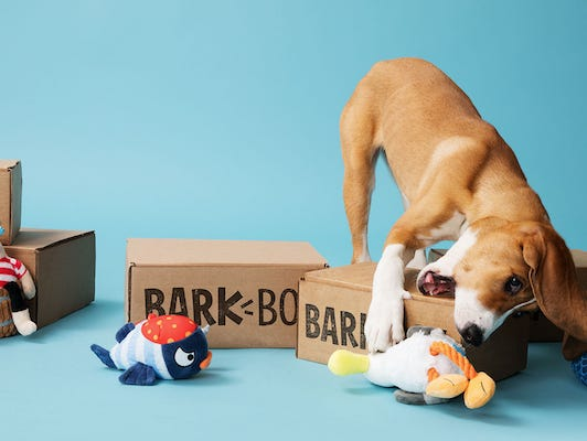 BarkBox is the monthly delivery of dog goodies you and your pup can't wait to rip open.
