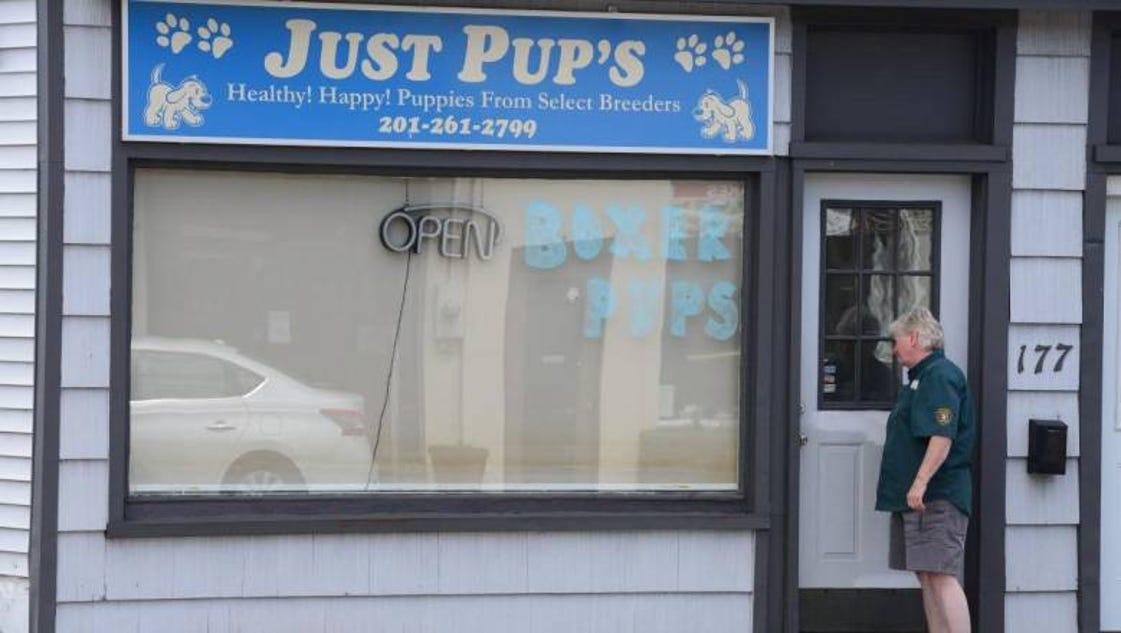 Dec 03, · 8 reviews of Pet Care Depot