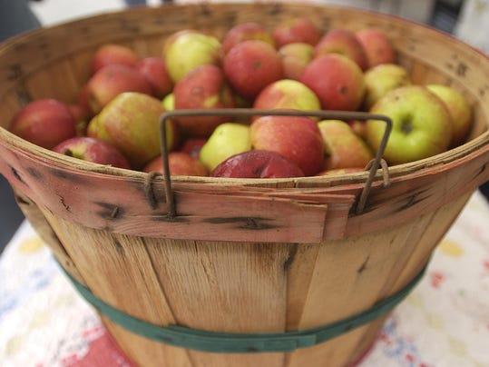 IMG_basket_of_apples_1_1_QL4TJPB8.jpg_20130825.jpg