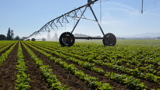 Linear irrigation systems in agriculture are touted for their efficient use of water and electricity, along with requiring less labor.