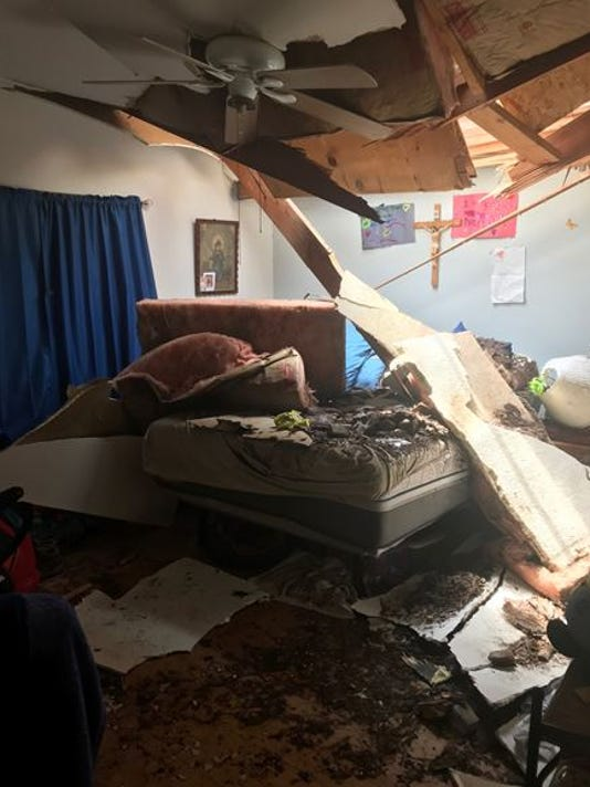 Palm tree snaps in half, lands in grandmother's bedroom