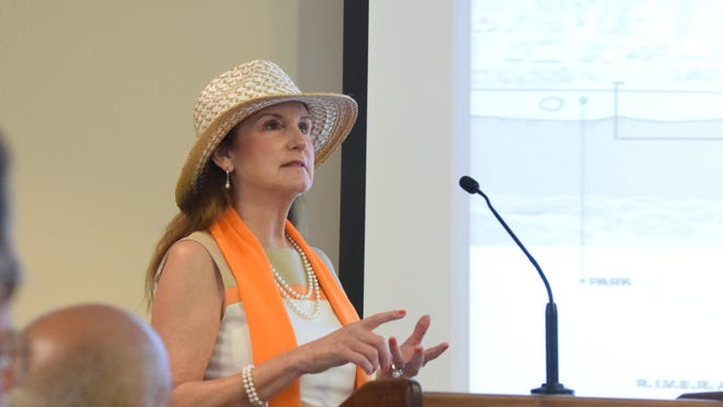 """Dr. Janet Schmitt tells Alexandria councilmen that adding charming green space to downtown """"would provide some grandeur"""" and """"put Alexandria on the map."""""""