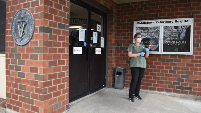 Jessica Timmins, a vet tech and hospital manager for Middletown Veterinary Hospital in the Town of Wallkill, waits on Tuesday for a client to drop off a pet for pressing medical services.