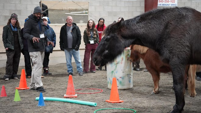 Trauma and Resiliency Resources, Inc. (TRR) hosted its' first Suicide Prevention Summit in Warwick. TRR's equine psychotherapy approach is unique in that it works with a herd of horses.