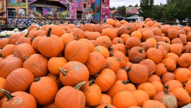Pocono Pumpkin Patch open now through Oct. 25 at Country Junction, Lehighton. PHOTO PROVIDED