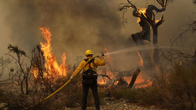 Jesse Vasquez, of the San Bernardino County Fire Department, hoses down hot spots from the Bobcat Fire on Sept. 19, in Valyermo, Calif.