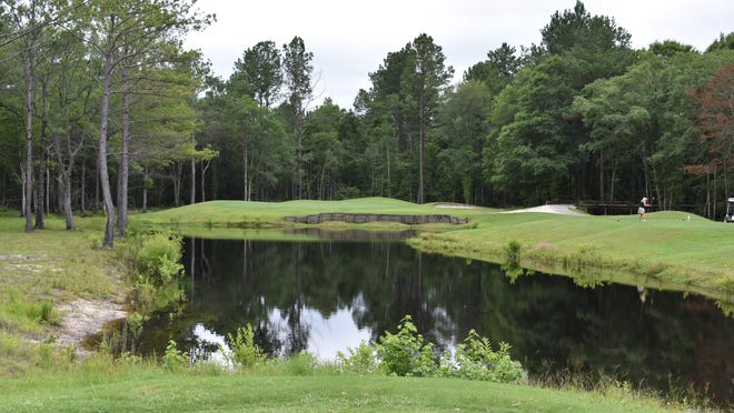 The par-3 No. 15 with an island green is the signature hole at Black Creek Golf Club.