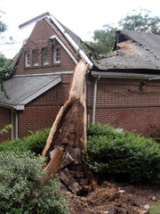 A tree sits on the Brandywine Zoo Monkey House in Wilmington on July 13, 2013, following a storm. The building was later razed.
