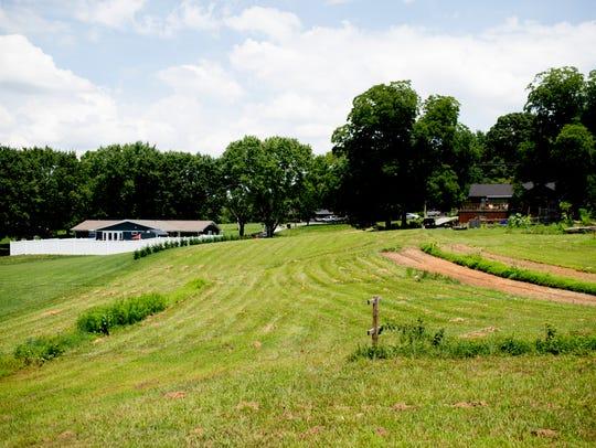 A view of Jeffry Turnmire's two acre backyard garden