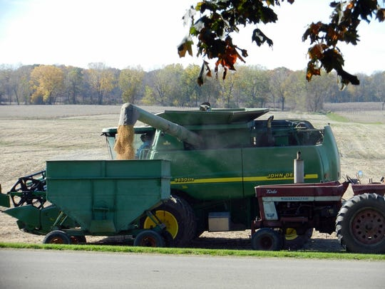 Soybeans fill the Manzke wagon.