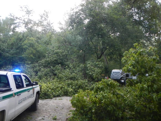 Trees were toppled Saturday during a storm at the Buffalo