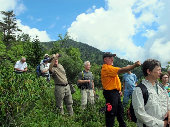 During a previous hike to Grey Eagle, hikers take in