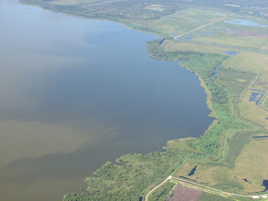 Fertilizer runoff, mostly from farms, sometimes turns