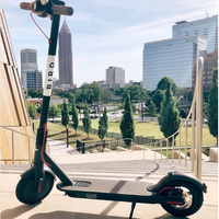 Scottsdale Scoots Past Objections To Bird Electric Scooter Rentals