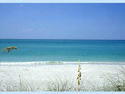 beach-insert.jpg