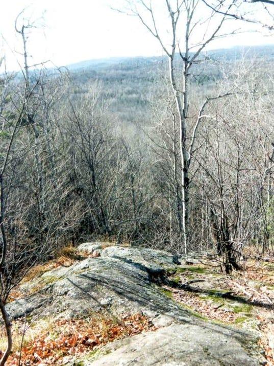 #4 Trap Hills (4).jpg