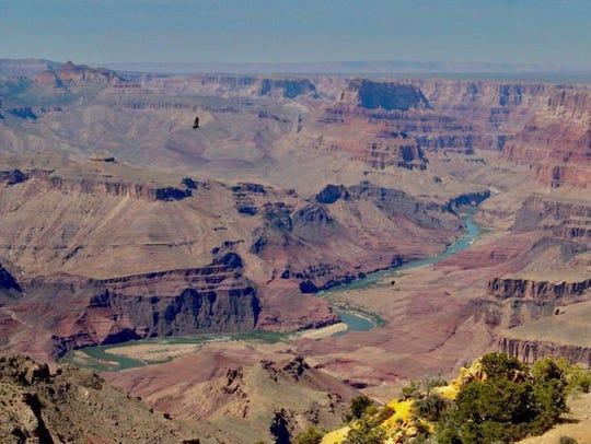 Uranium is naturally occurring in northern Arizona