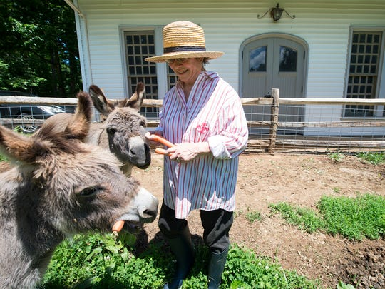 Patricia Longenecker gives her donkeys carrots at her home in West Donegal Township, Lancaster County, a few miles from Perdue AgriBusiness's proposed soybean processing plant in Conoy Township. Longenecker, 72, is one of three appellants listed on an appeal filed to the Pennsylvania Environmental Hearing Board, which challenges the state Department of Environmental Protection's approval of Perdue's plant to build a soybean crushing plant in Conoy Township.