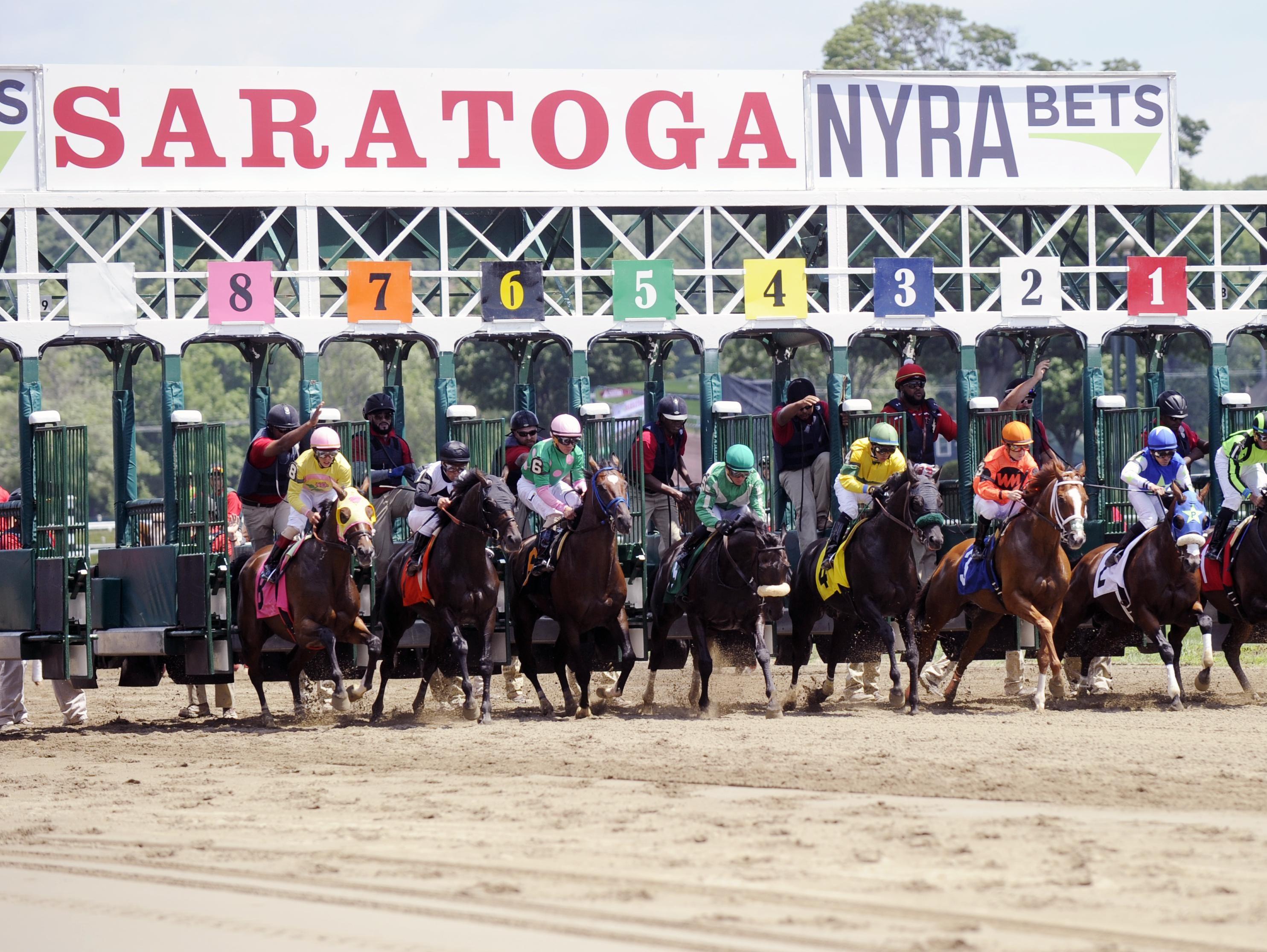 HORSE RACING AT SARATOGA THE START GRANDSTAND SPECTATORS SADDLE HORSE RACE