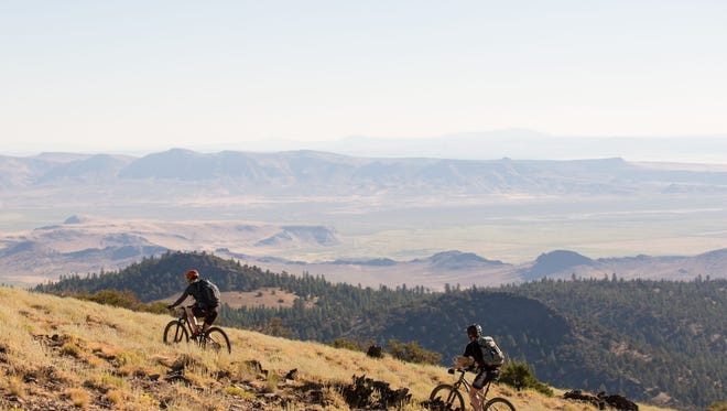A mountain biker on the Hood Tier of the Oregon Timber Trail.