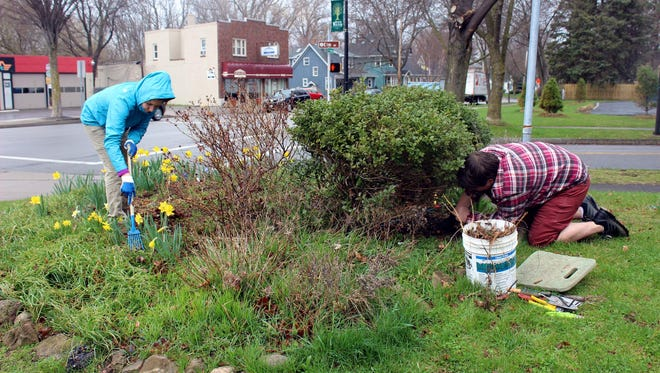 Peace of Christ parishioners Irene and Matt DeMarco, from Irondequoit, spent about an hour weeding and pruning a garden at Gazebo Park on Winton Road before a driving spring rain drove them inside.