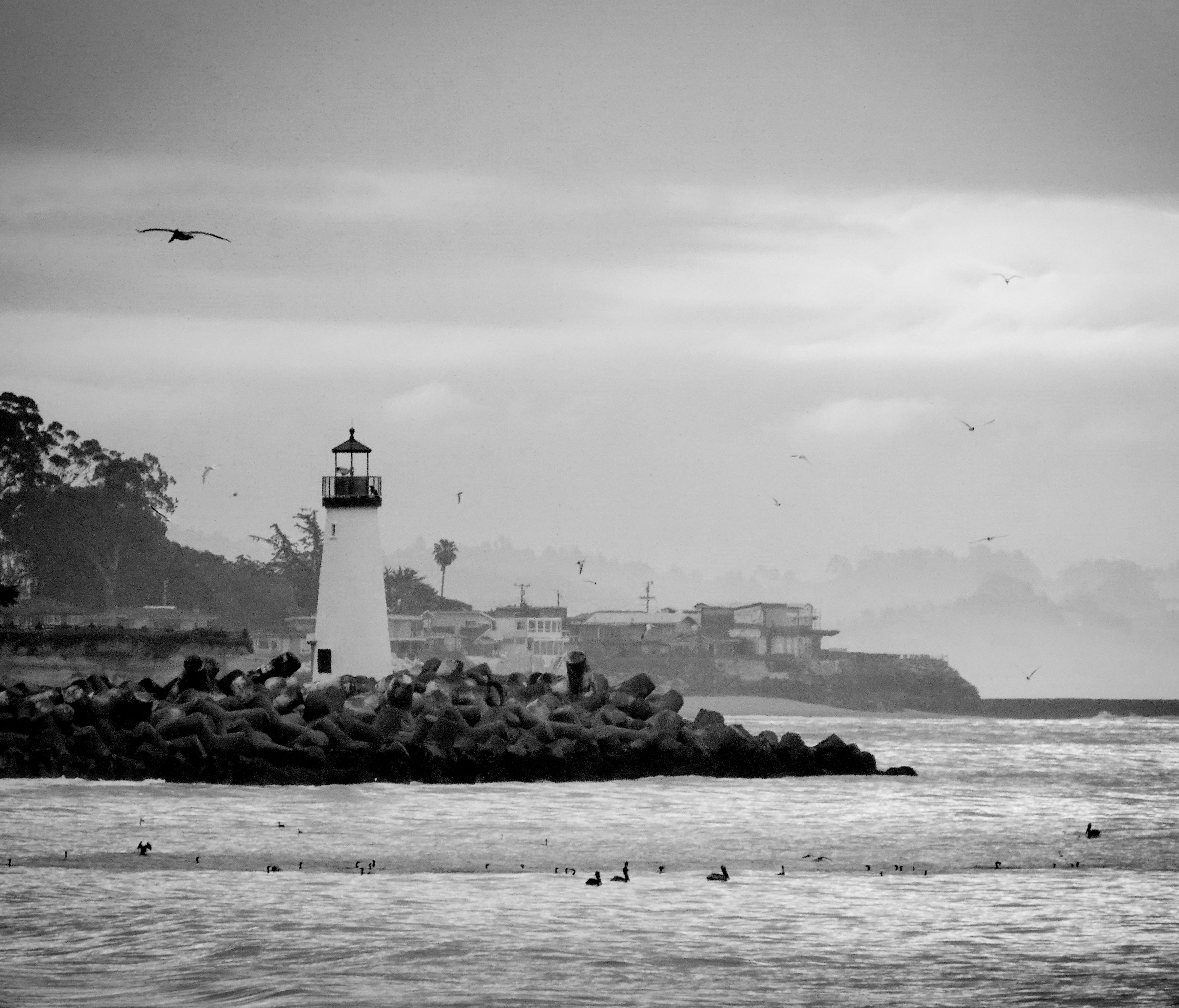 The Walton Lighthouse at the mouth of the Santa Cruz harbor