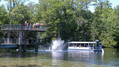 SB 552 implements a plan to clean up Florida springs, rivers and lakes