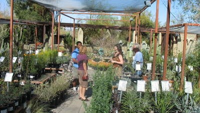 The Living Desert is holding its annual plant sale later this month.