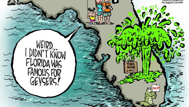 Toxic algae blooms are once again exploding in Florida waterways.