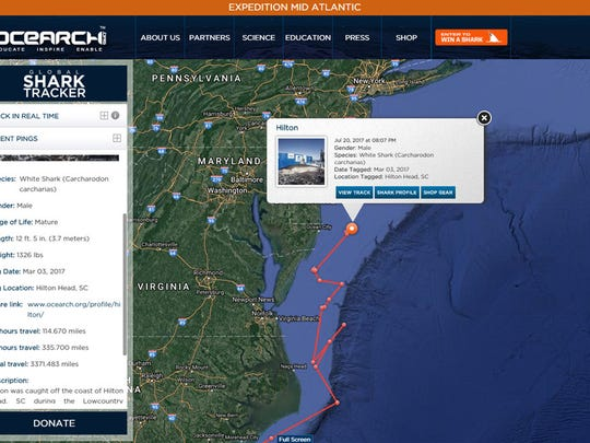 OCEARCH's shark tracker shows Hilton the Sharks location on July 20, 2017.