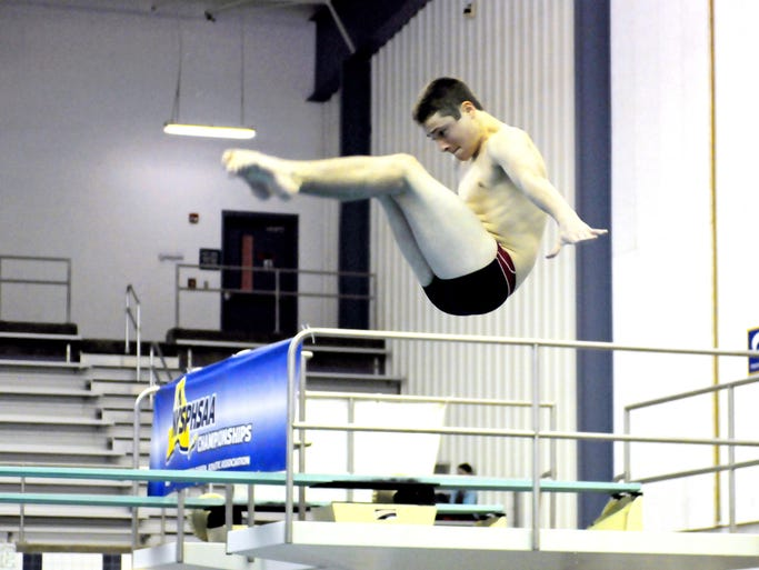 Evan Moretti of Scarsdale, dives during the 2014 NYSPHSAA Swimming Championship at Webster Schroeder High School in Webster, N.Y. on Friday, Feb. 28, 2014.