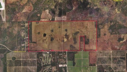 A judge has given the Estero group seeking to block development of Corkscrew Farms 20 days to fix what she rules are fatal defects with the suit, entitling the developer to have the case dismissed.
