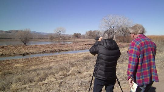 Call Lincoln County Bird Watching Club at 575-937-5416 for more information on a winter field trip to Bitter Lakes.
