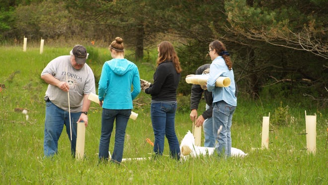 Woodland Dunes Nature Center and Preserve volunteers and staff recently planted native trees.